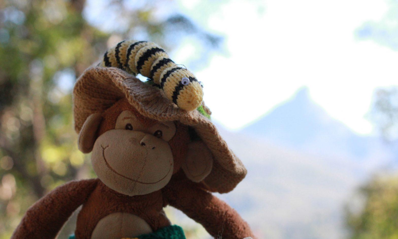 Monkey's Great Adventures
