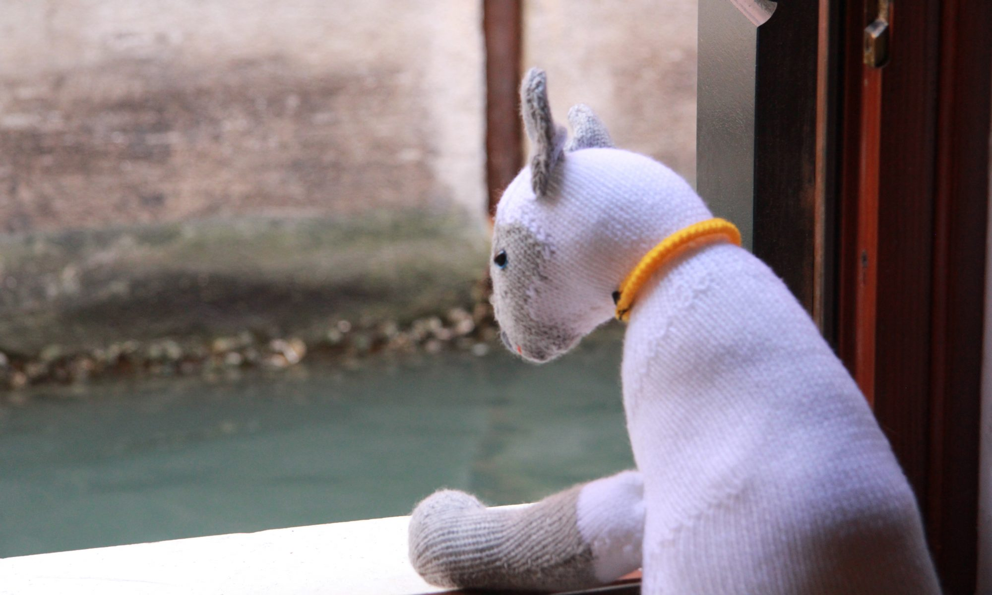 Clarabella the knitted cat looking at a canal in Venice