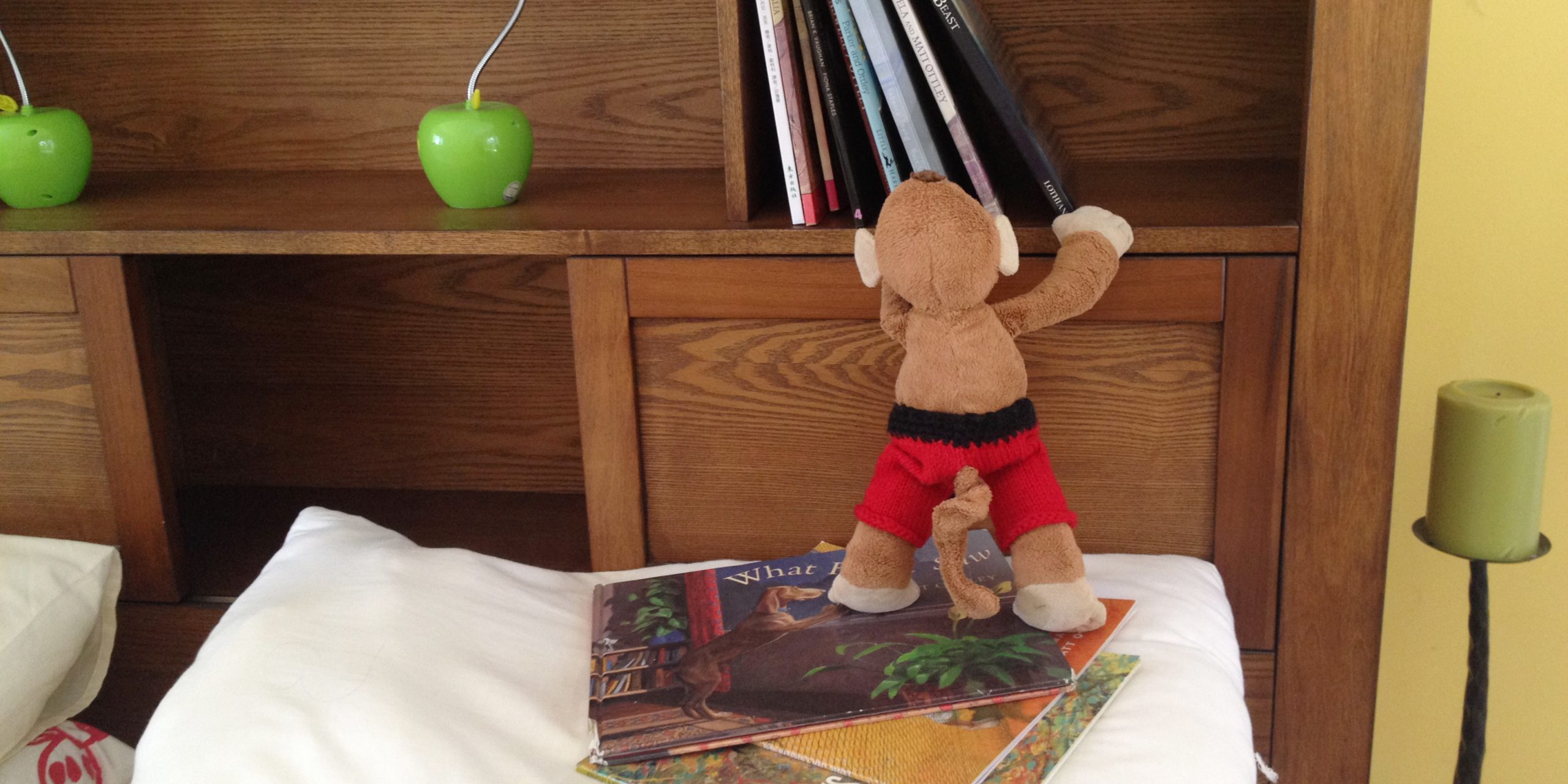 Monkey reading picture books