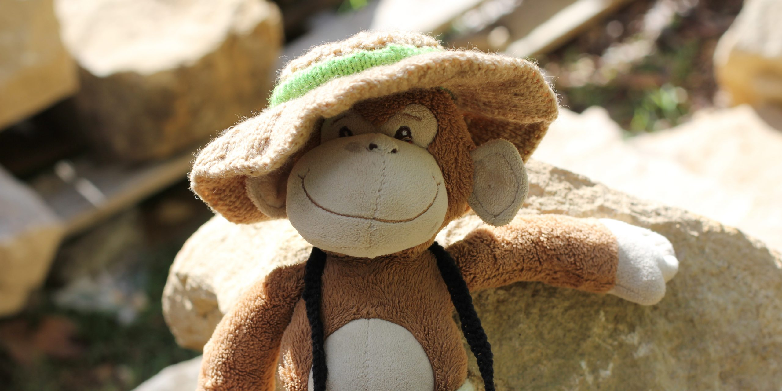 Monkey wearing a knitted hat