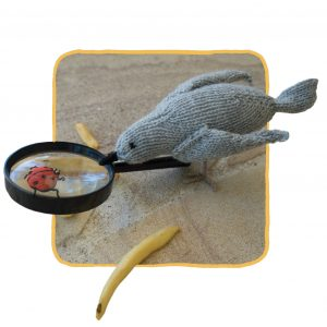 Sam (Salvador) the knitted seagull searching for insects
