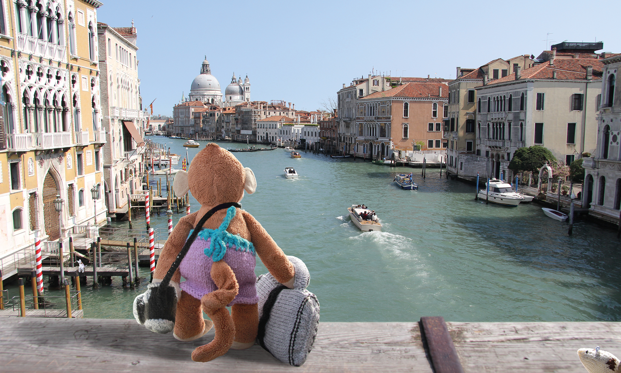 Monkey looking at the grand canal in Venice