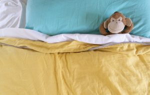 Monkey day dreaming in bed.