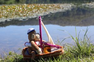Monkey in his knitted boat