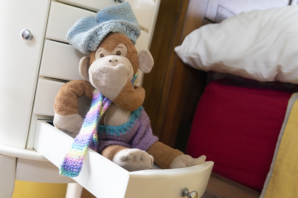 Monkey packing his clothes for Venice